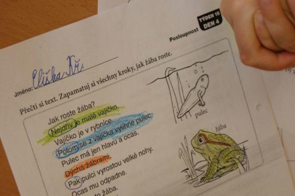Žáci označují signální slova - Čteme s porozuměním každý den (K. Vrtišková)