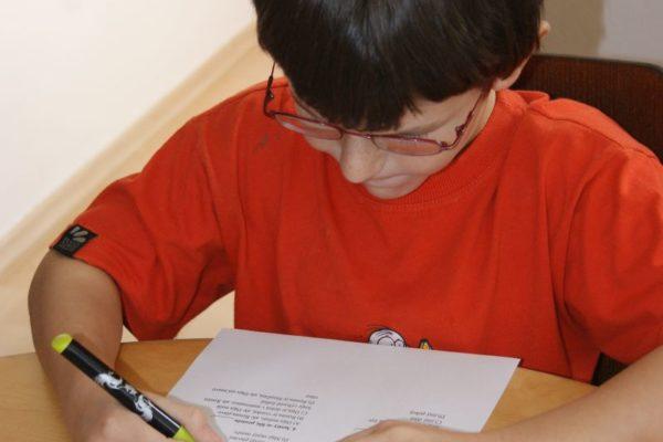 Domácí škola - Čteme s porozuměním každý den (K. Šafránková